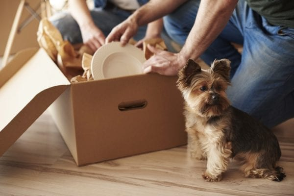 how to avoid problems when moving